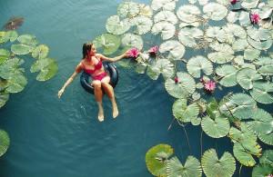 Хевиз-озеро